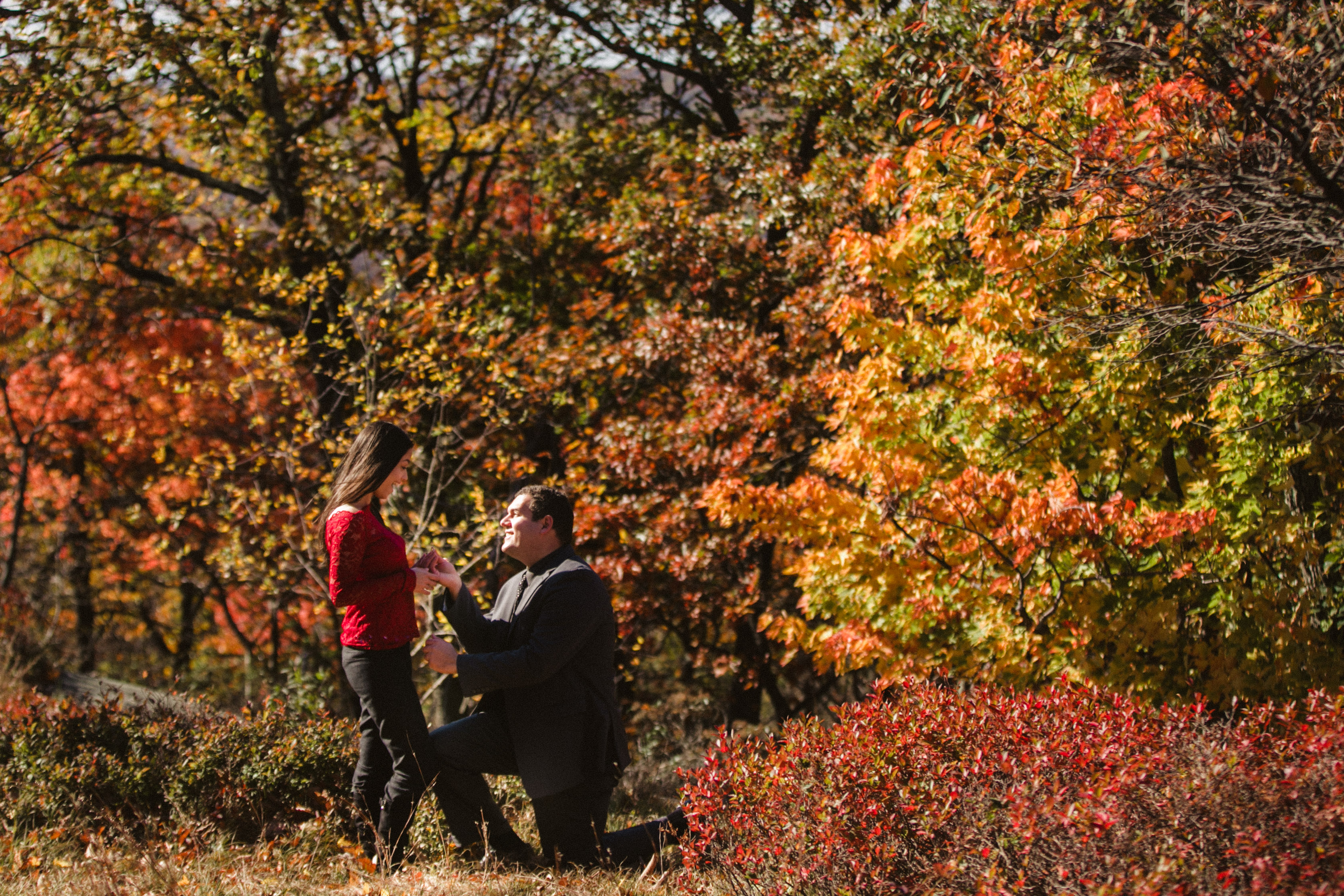 Fall Bear Mountain State Park Engagement session